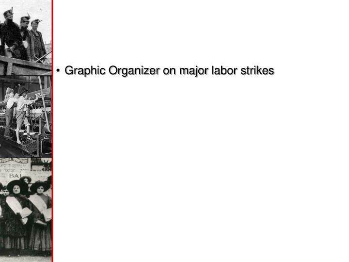 Graphic Organizer on major