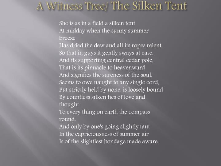 A Witness Tree/