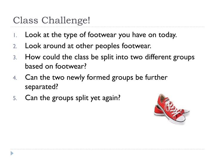 Class Challenge!