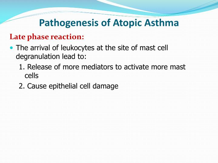Pathogenesis of Atopic Asthma