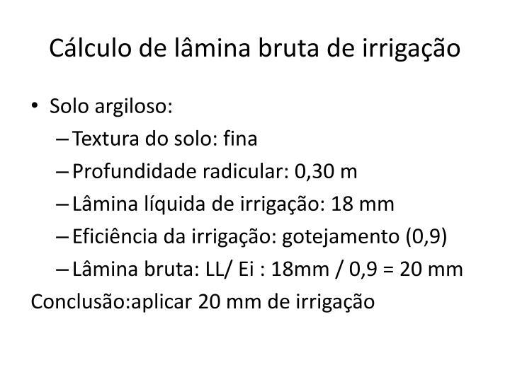 Cálculo de lâmina bruta de irrigação