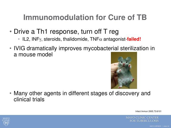 Immunomodulation for Cure of TB