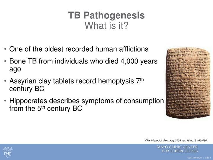 TB Pathogenesis