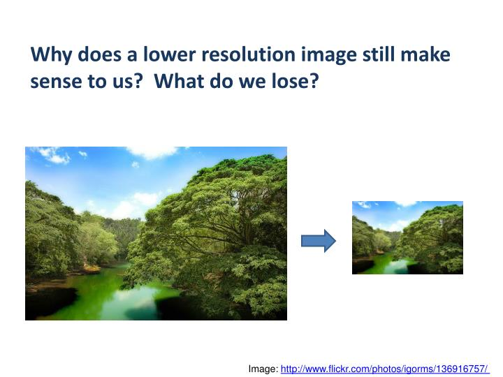 Why does a lower resolution image still make sense to us?  What do we lose?