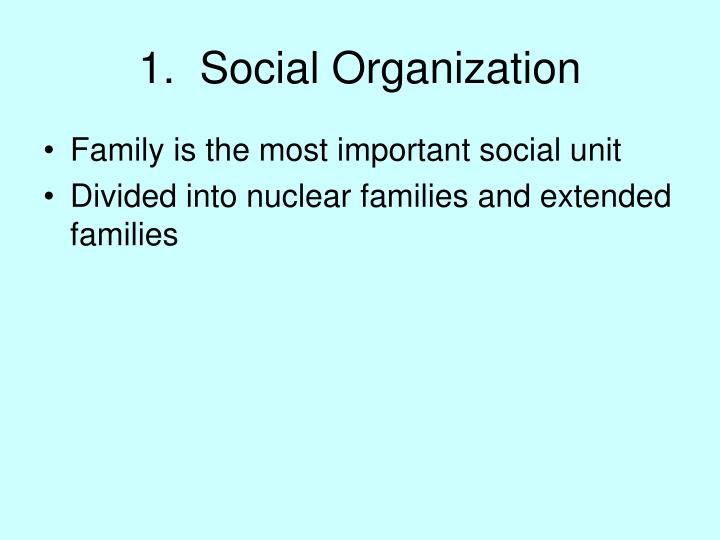 1.  Social Organization