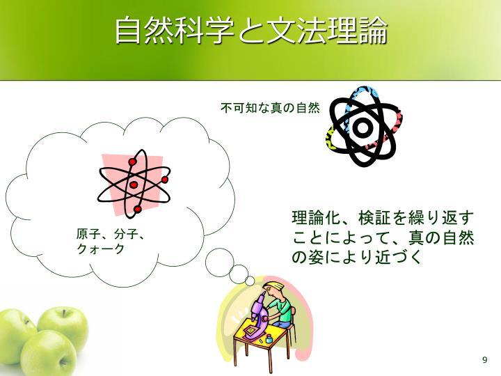 自然科学と文法理論