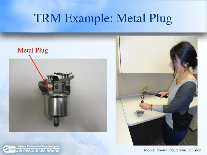 TRM Example: Metal Plug