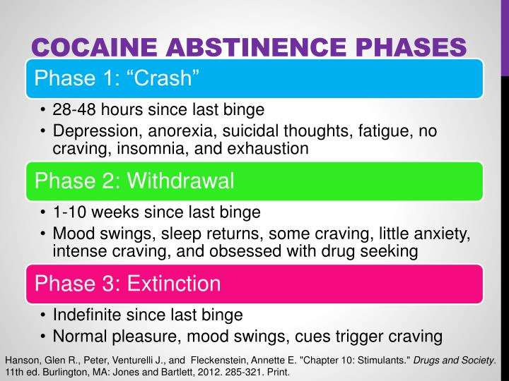 Cocaine Abstinence Phases