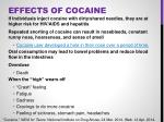 effects of cocaine1
