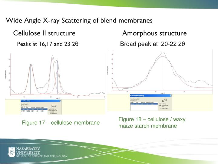 Wide Angle X-ray Scattering of blend membranes
