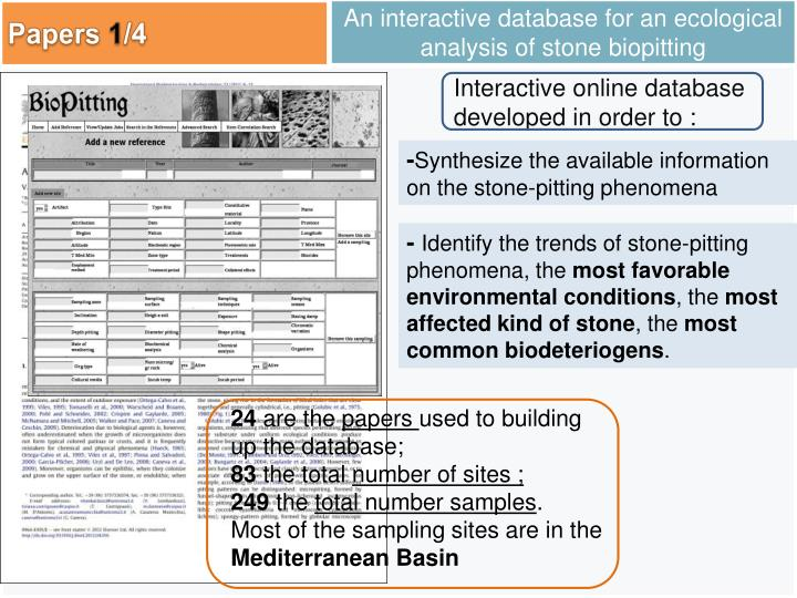 An interactive database for an ecological analysis of stone