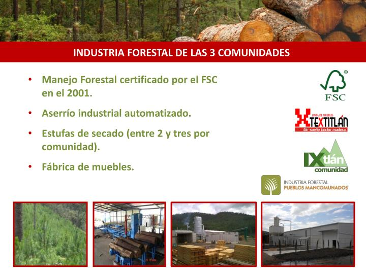 INDUSTRIA FORESTAL DE LAS 3 COMUNIDADES