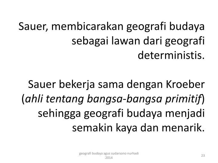 Sauer,