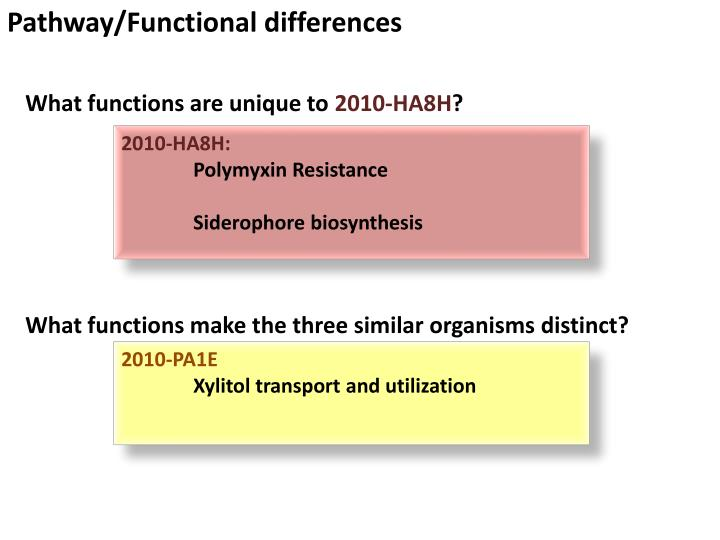 Pathway/Functional differences