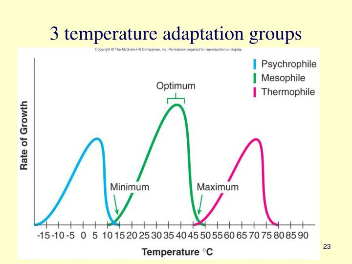 3 temperature adaptation groups