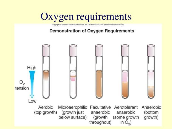 Oxygen requirements