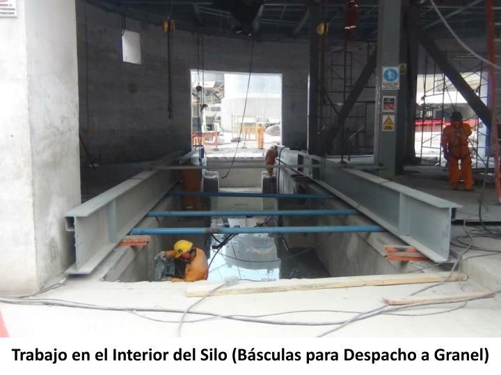 Trabajo en el Interior del Silo (Básculas para Despacho a Granel