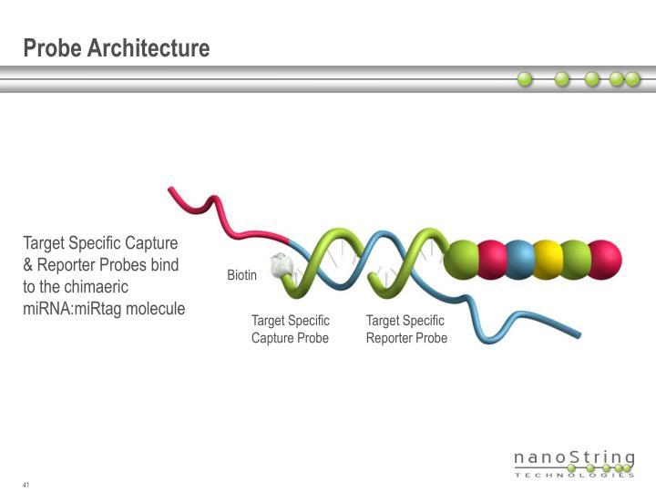 Probe Architecture