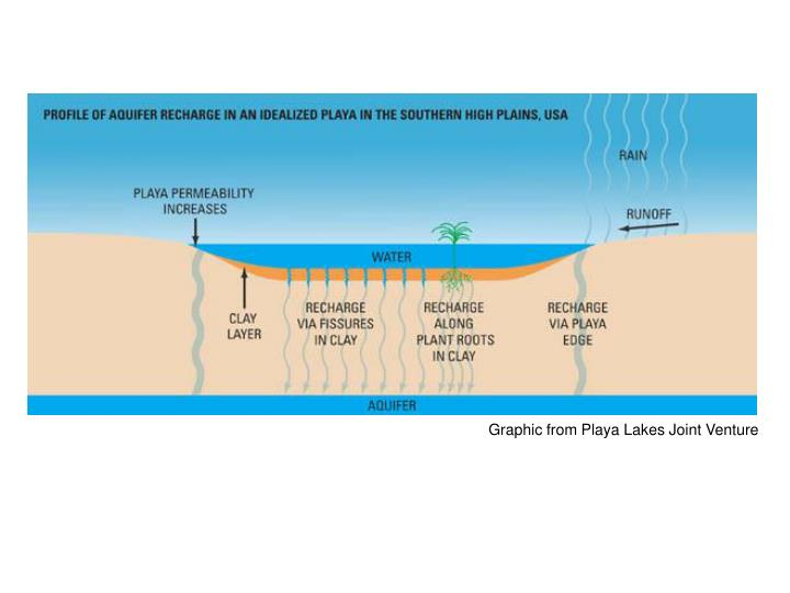 Graphic from Playa Lakes Joint Venture