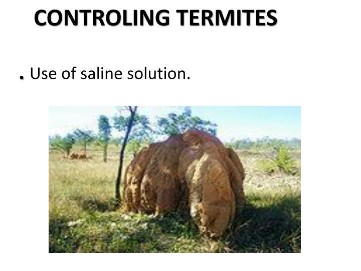 CONTROLING TERMITES