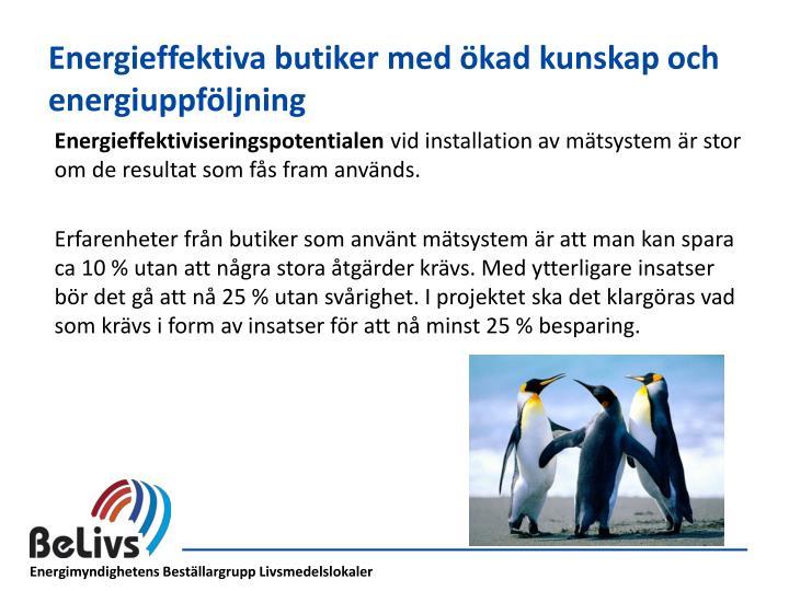 Energieffektiva butiker med ökad kunskap och energiuppföljning