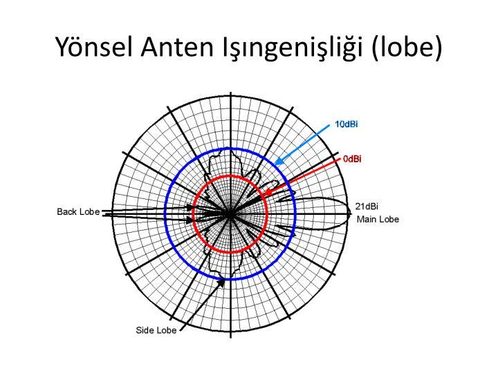 Yönsel Anten