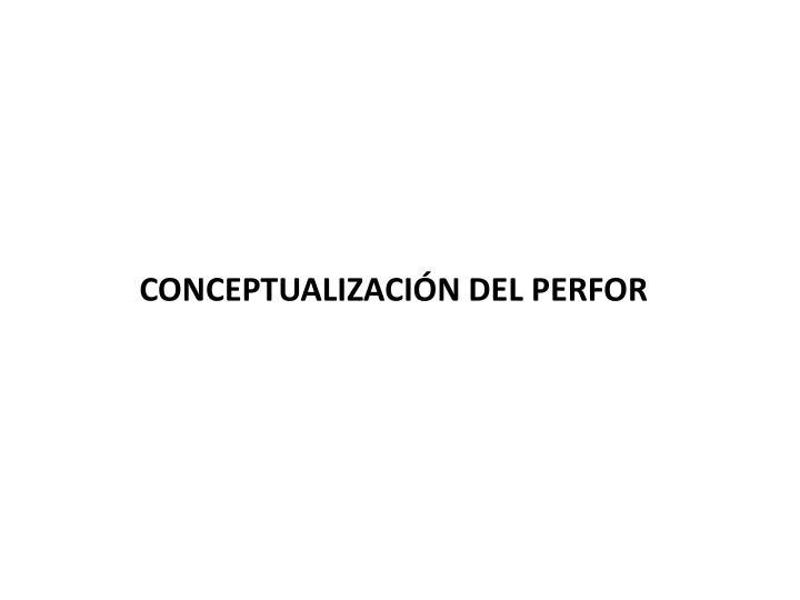CONCEPTUALIZACIÓN DEL PERFOR
