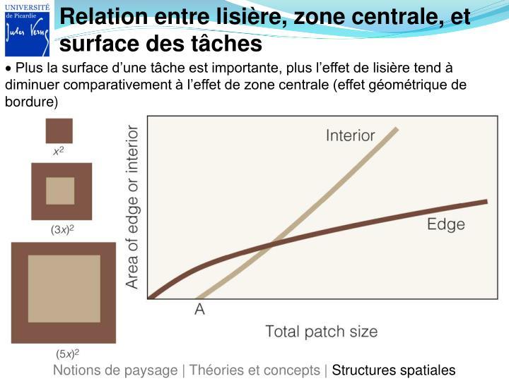 Relation entre lisière, zone centrale, et surface des tâches