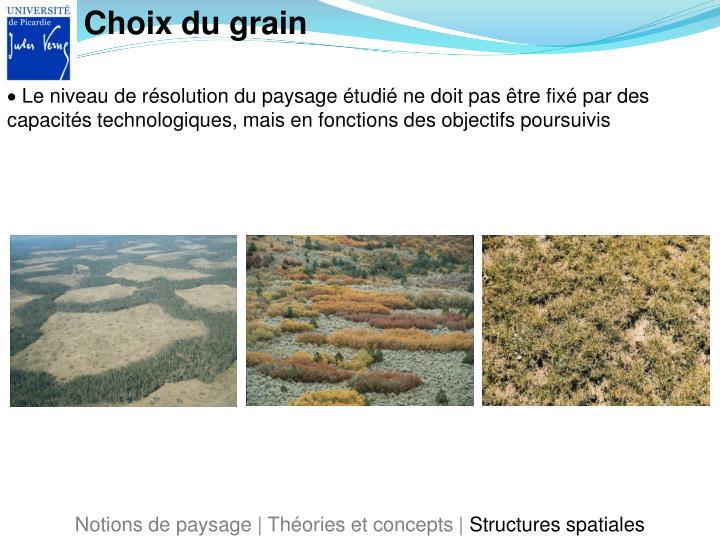 Choix du grain