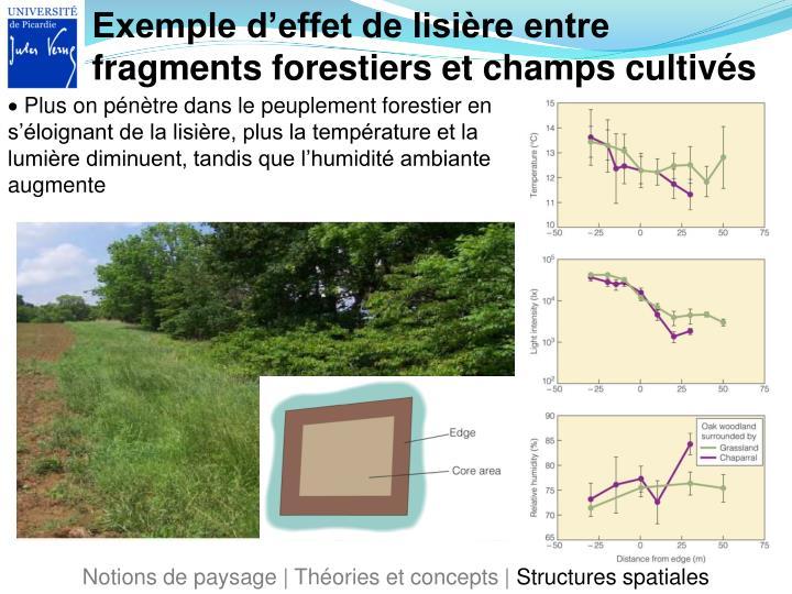Exemple d'effet de lisière entre fragments forestiers et champs cultivés