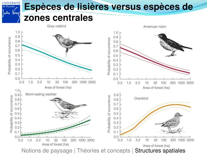 Espèces de lisières versus espèces de zones centrales