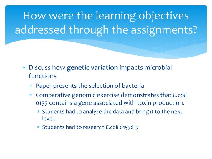How were the learning objectives addressed through the assignments?