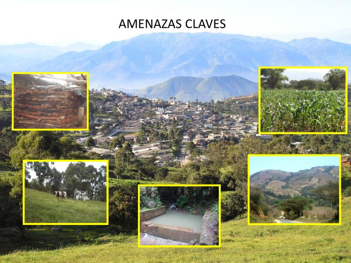 Amenazas claves