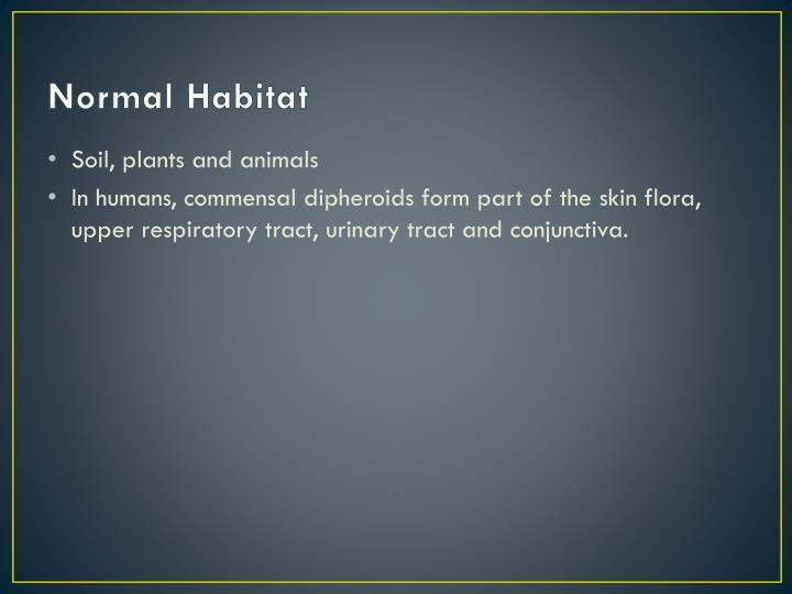 Normal Habitat