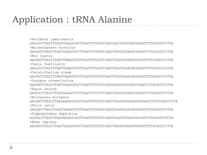 Application : tRNA Alanine