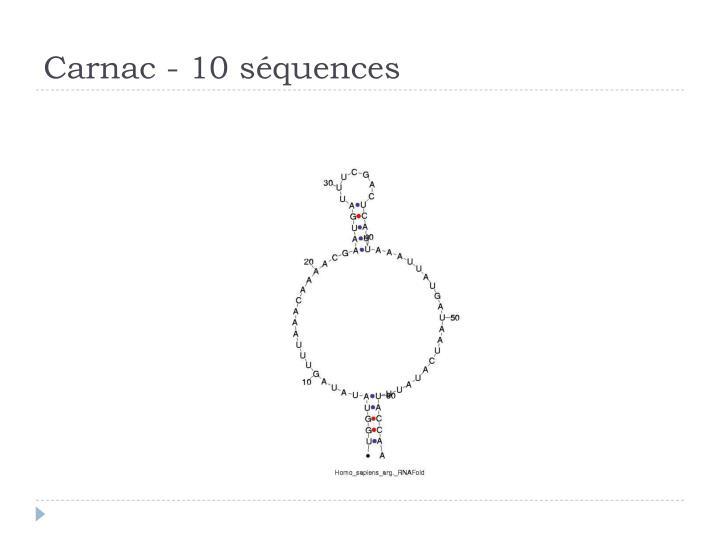 Carnac - 10 séquences