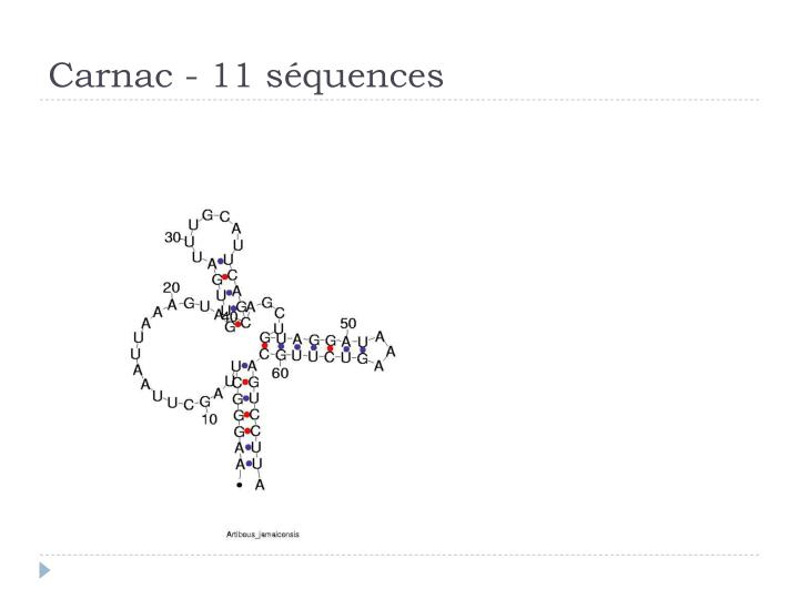 Carnac - 11 séquences