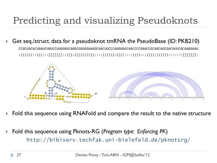 Predicting and visualizing Pseudoknots