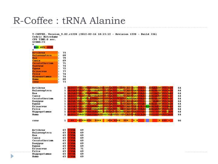 R-Coffee :