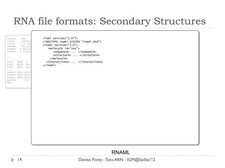 RNA file formats: