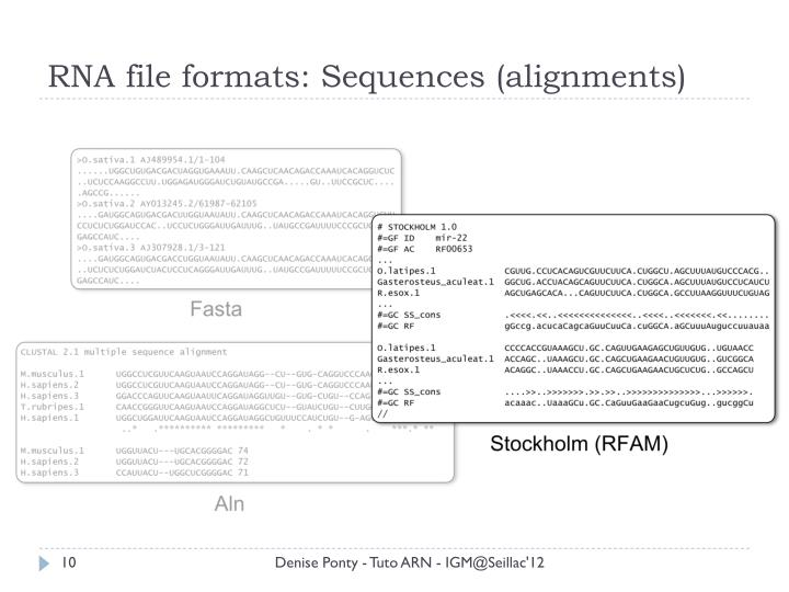 RNA file formats: Sequences (alignments)