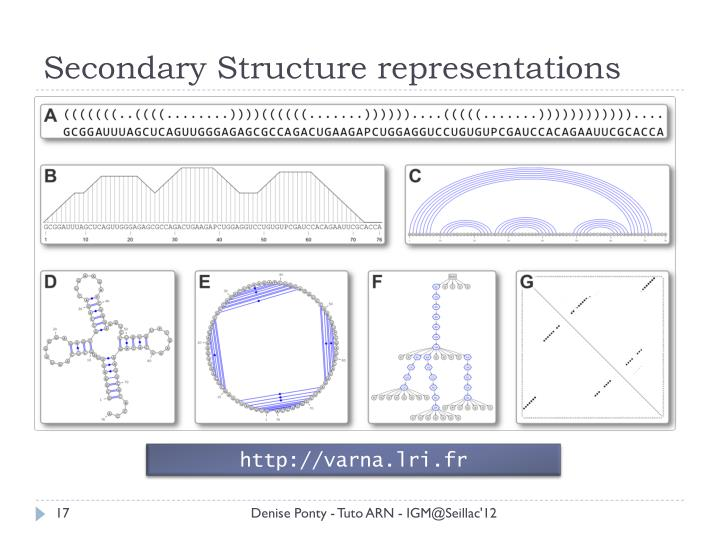 Secondary Structure representations