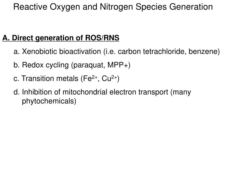 Reactive Oxygen and Nitrogen Species Generation