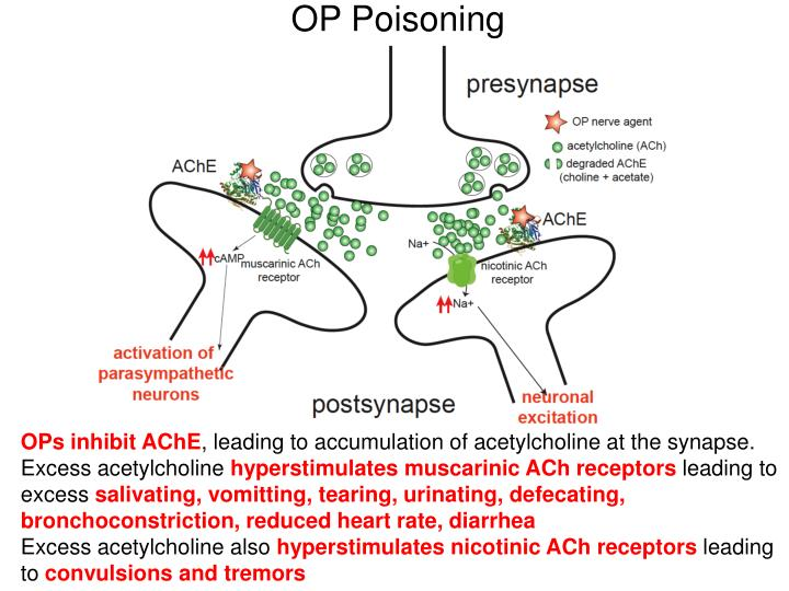 OP Poisoning