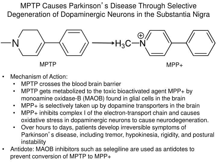 MPTP Causes Parkinson
