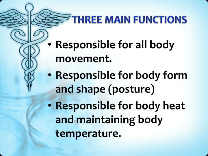 THREE MAIN FUNCTIONS