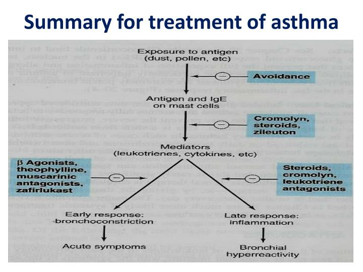 Summary for treatment of asthma