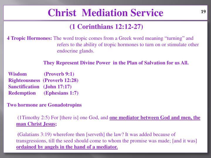 Christ  Mediation Service