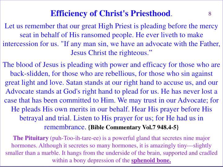 Efficiency of Christ's Priesthood