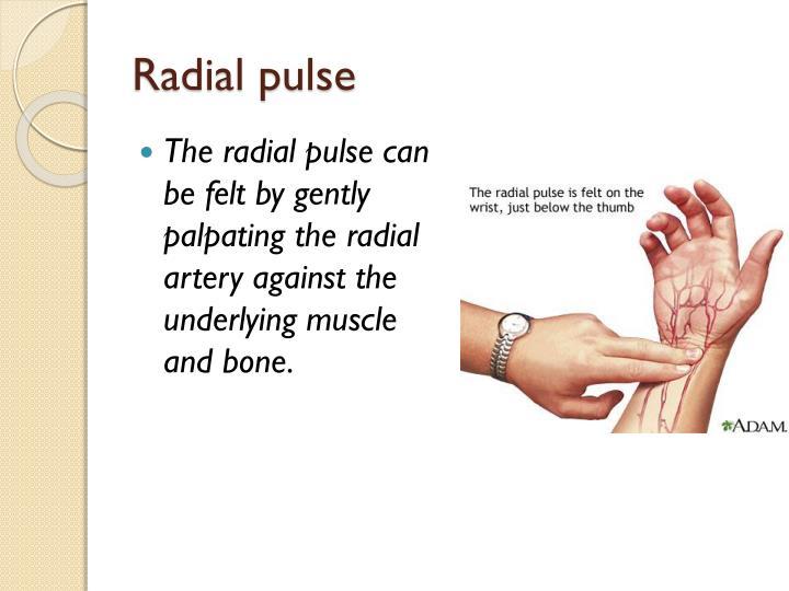 Radial pulse